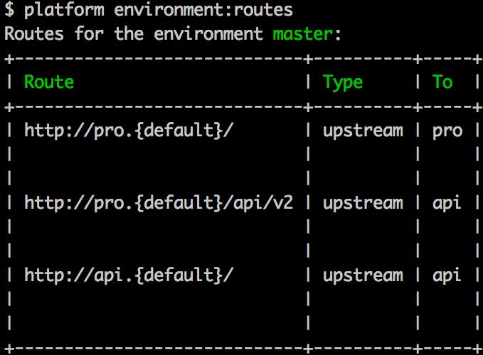 WebPaas Routes CLI